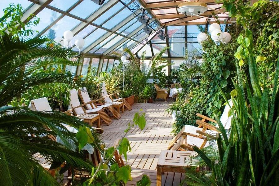 зимний сад идеи для вашего дома